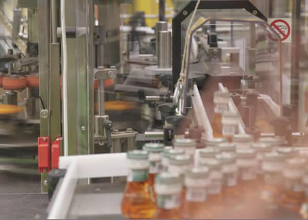 produzione olio di alta qualità